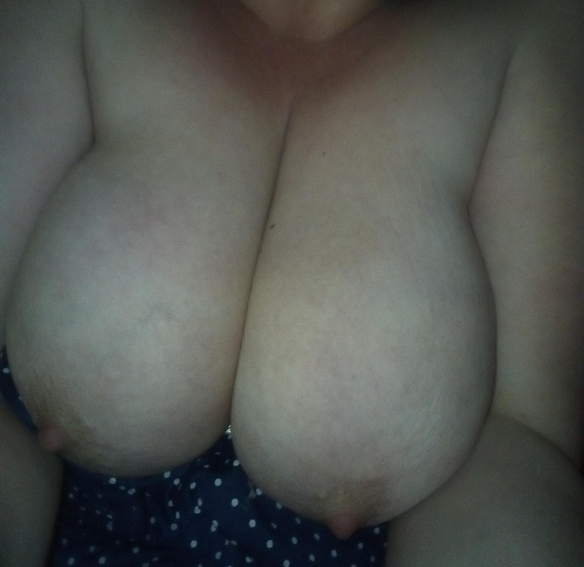 big pair of amateur tits